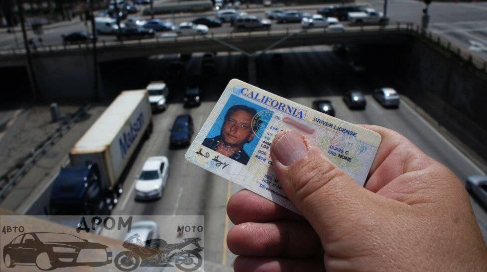 Получение водительских прав в сша. водительские права в америке