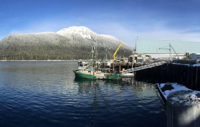 Работа для граждан СНГ на Аляске: плюсы и минусы