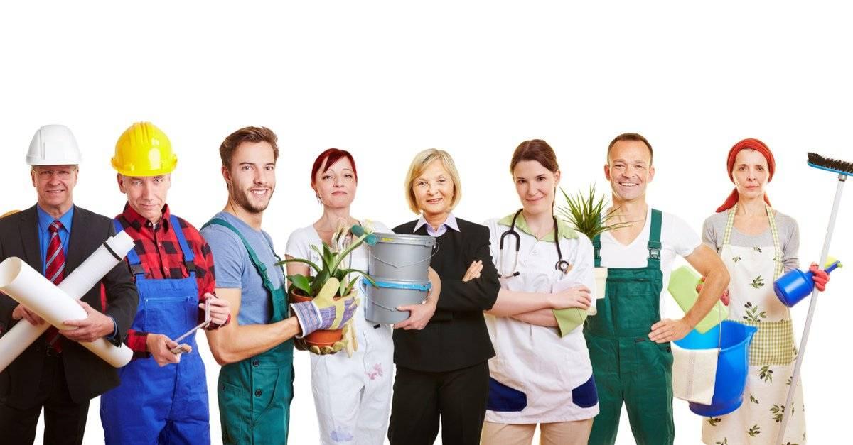 Самые востребованные профессии в польше в 2021 году