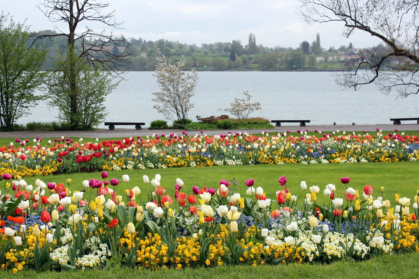 Остров цветов Майнау в Германии – самое романтичное место планеты