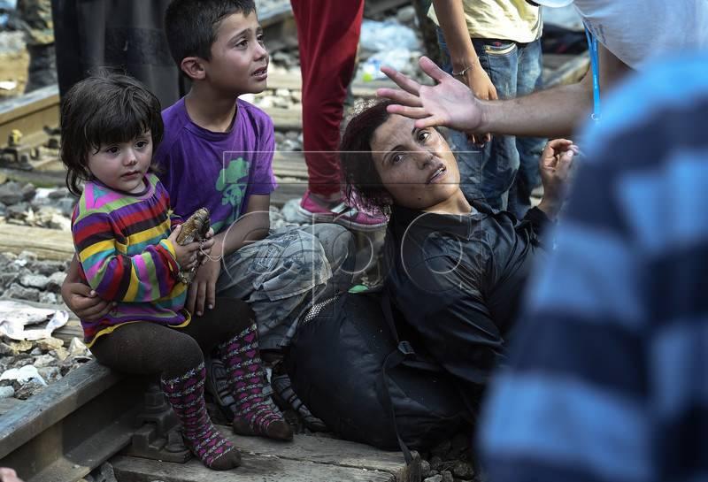 Ситуация с беженцами в португалии в 2019 году