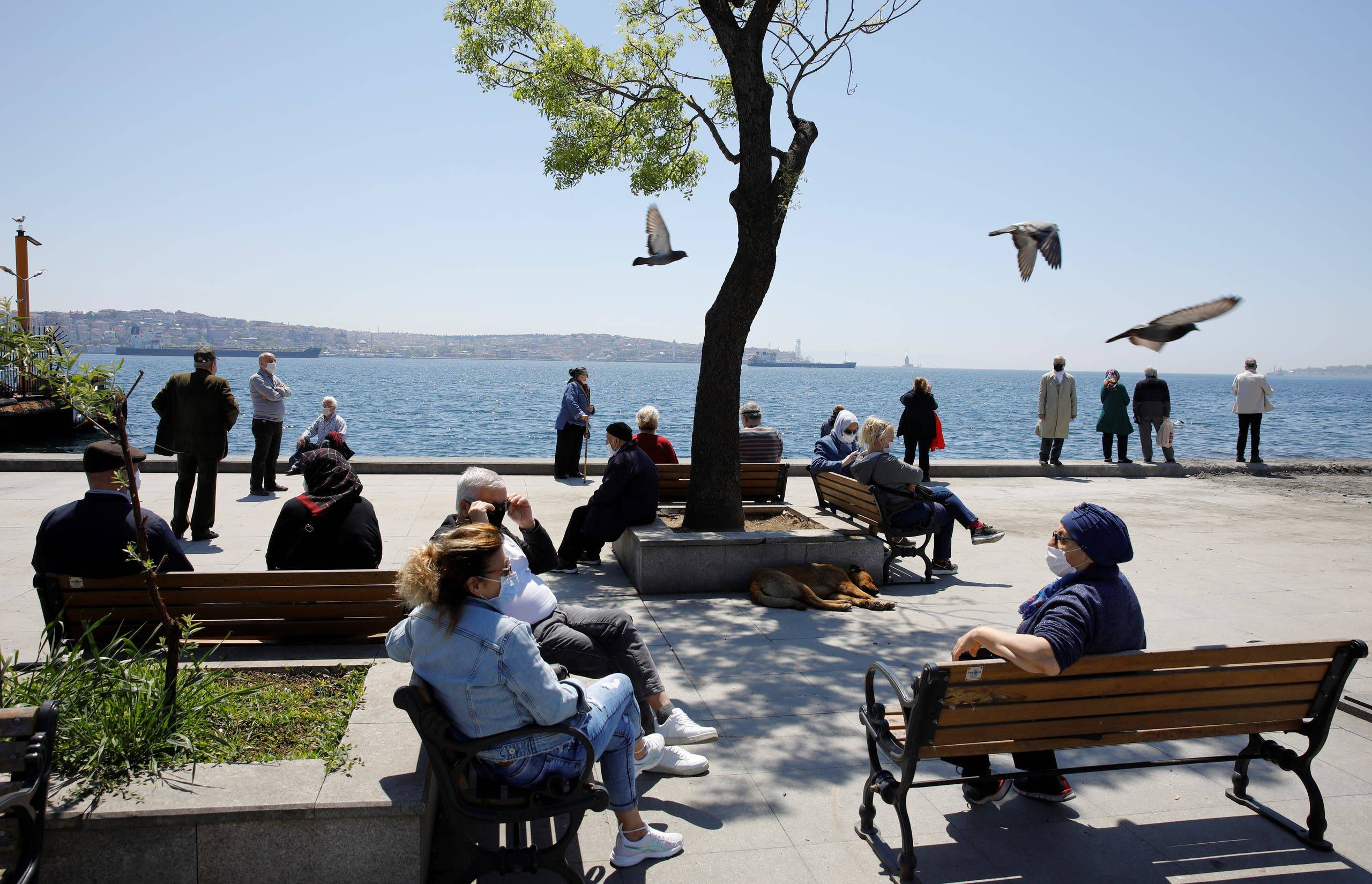 Когда откроют турцию в 2020 году: заявления главы турецких отельеров