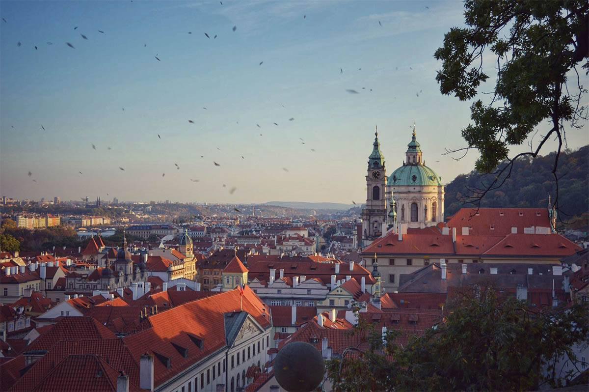 Как быстро и дешево добраться из Брно в Прагу