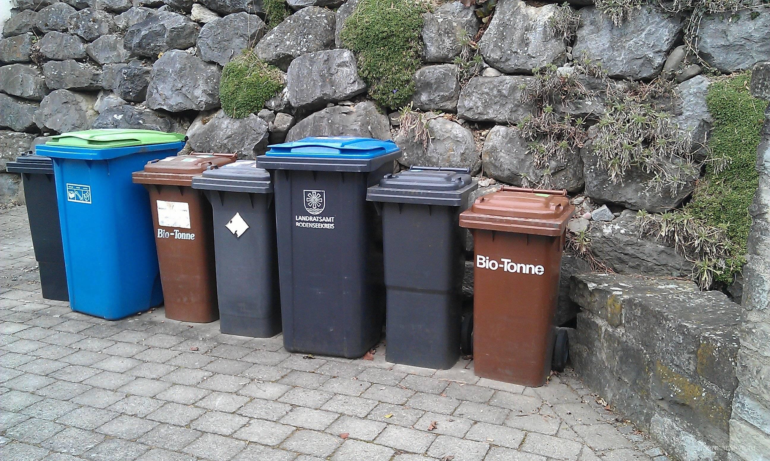 С2020 года москва переходит нараздельный сбор мусора как правильно сортировать отходы инезабросить это дело через неделю?