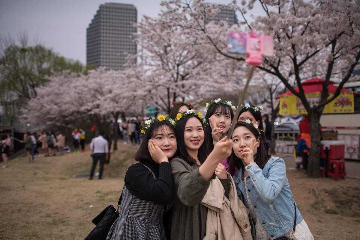 7 принципов, традиций и особенностей жизни в южной корее (8 фото)