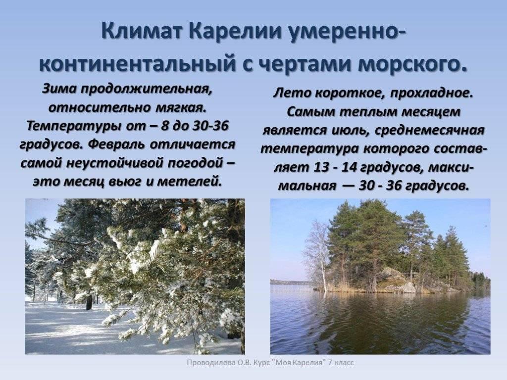 Отдых в финляндии летом и зимой: популярные курорты и места для отпуска