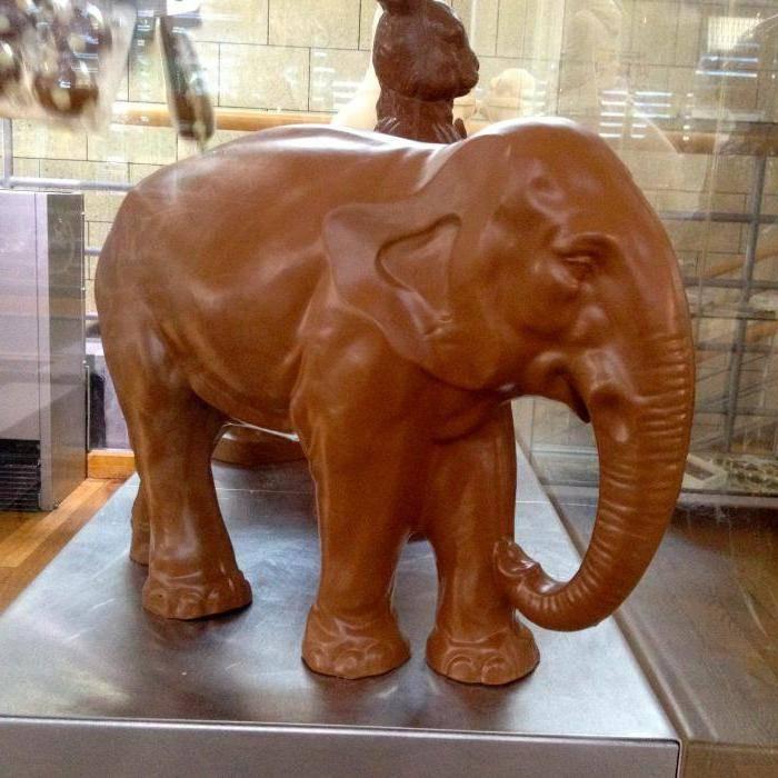 Музей шоколада в кельне – описание, история, фотографии