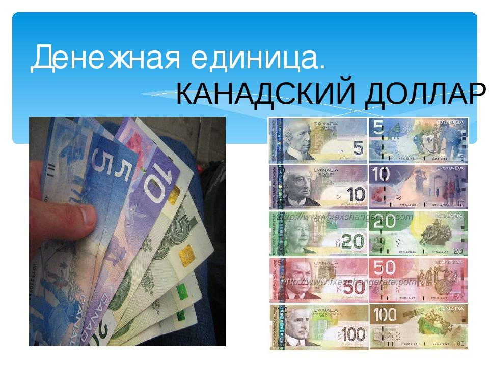 Валюта австралии: банкноты, монеты,пластиковые деньги, курс