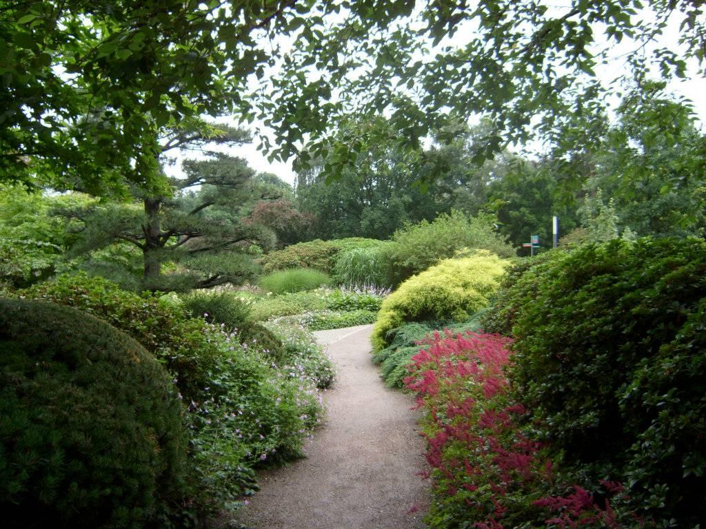 12 самых потрясающих ботанических садов мира - сайт о путешествиях