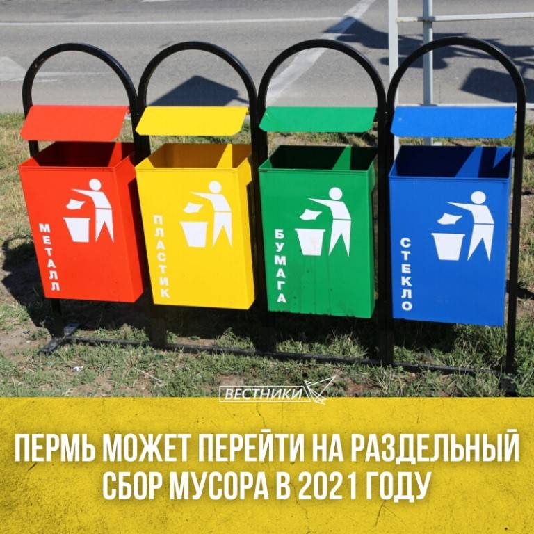 Для чего нужен раздельный сбор мусора: зачем сортировать отходы, плюсы, минусы и актуальность разделения, польза и преимущества такого подхода