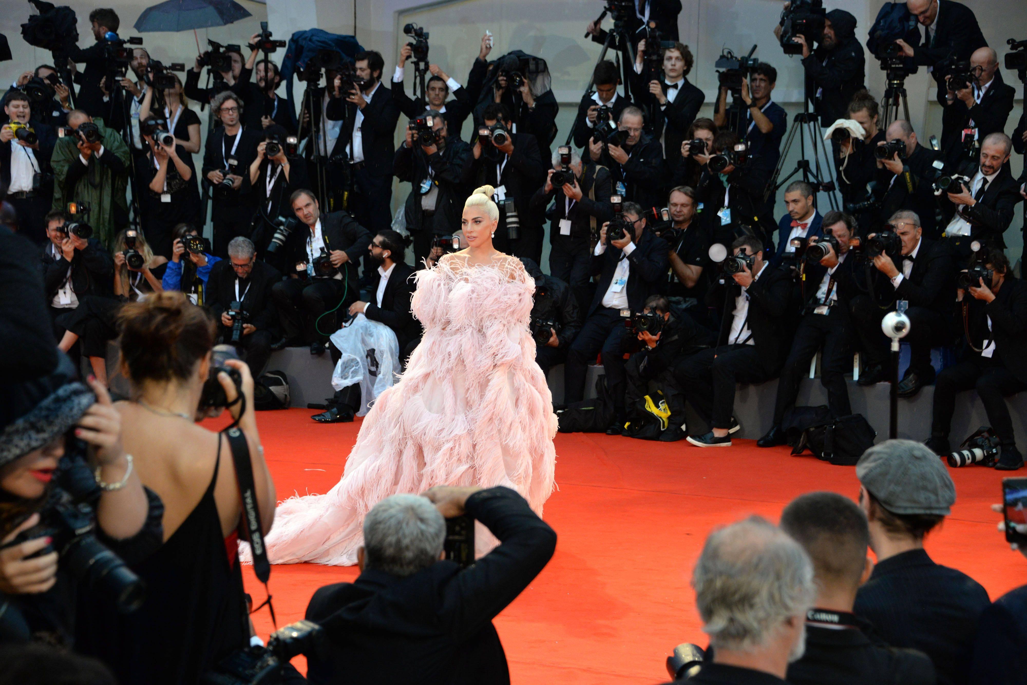 Проведение каннского кинофестиваля-2020 в новом формате