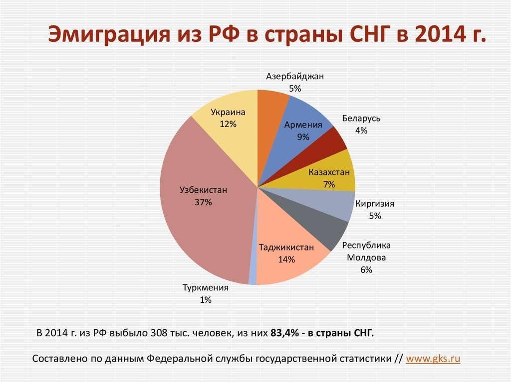 Бизнес в чехии для русских, как организовать с нуля, стоит ли купить готовый бизнес, налоги на прибыль, на недвижимость и подоходный налог