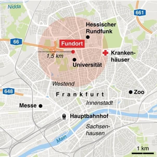 Как добраться из Франкфурта-на-Майне в Амстердам: путешествие в столицу Нидерландов