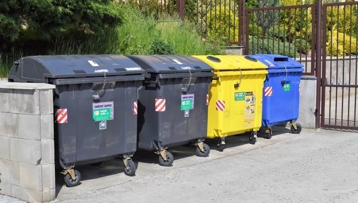 Сортировка мусора в россии: нововведения, сложности и перспективы