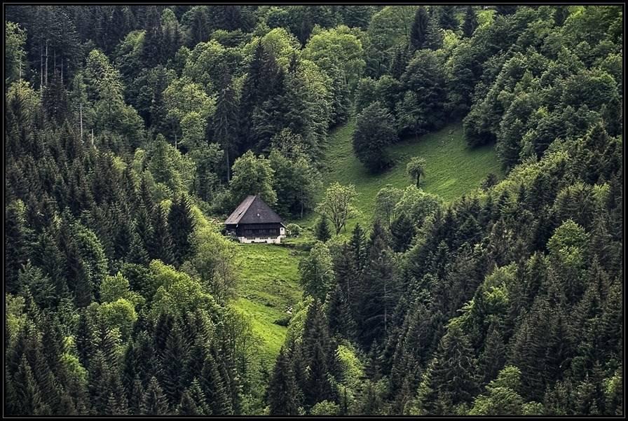 Баварский лес: достопримечательности, активный отдых, отзывы туристов, рестораны, маршруты