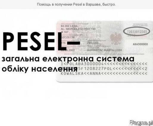 Pesel – полная информация. что нужно знать иностранцу – real krakow