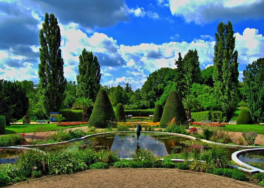 Ботанический сад (берлин)