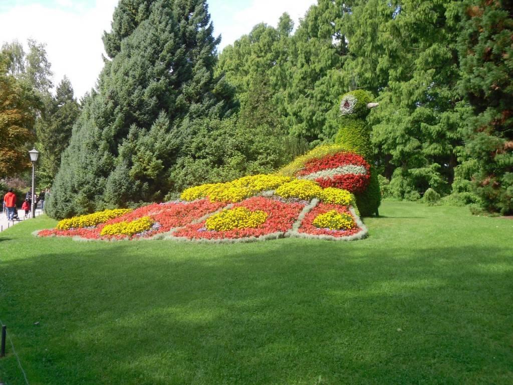 Германия. майнау: остров цветов | парки мира | ландшафт | ассбуд — строительный портал