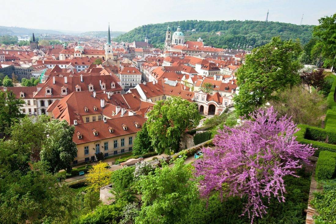 Климат чехии википедия