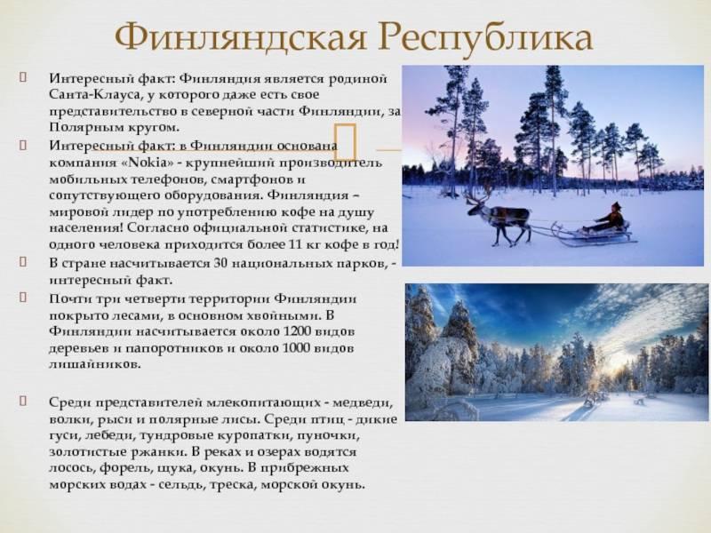 Работа в финляндии для русских вахтой, как найти работу, отзывы