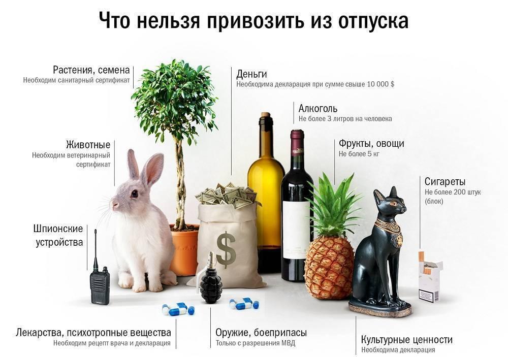 Что можно и запрещено ввозить в россию, беспошлинные нормы провоза товаров для личного пользования, правила растаможки