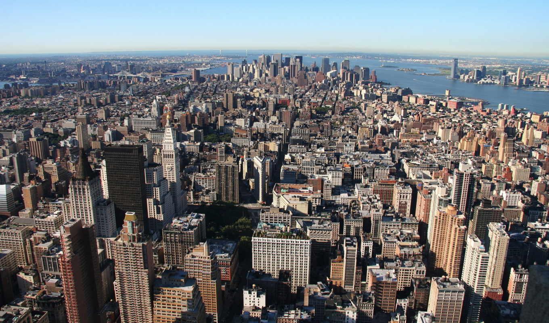Средняя зарплата в нью йорке 2021 года: востребованные профессии и что нужно для работы