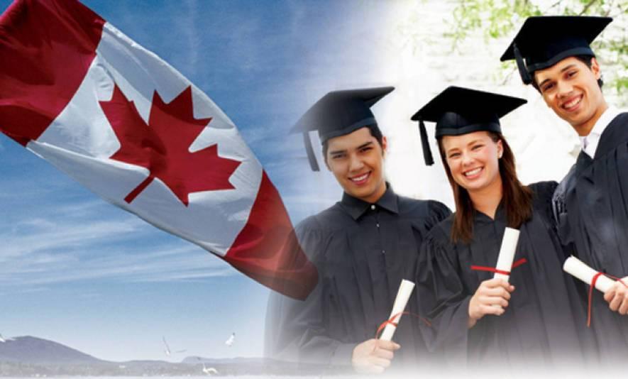 Высшее образование в соединенных штатах америки | учеба в сша