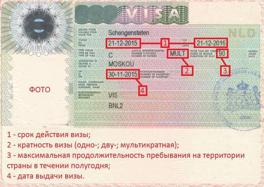 Правила получения рабочей визы в чехию для россиян