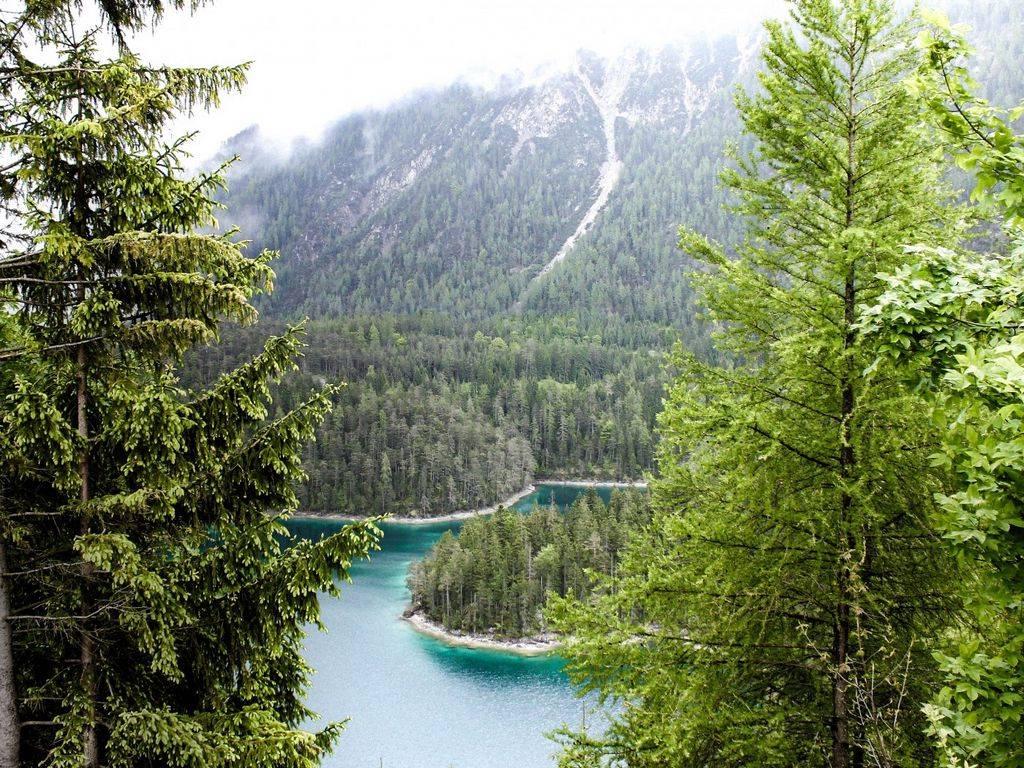 Активный отдых: баварский лес с высоты птичьего полета