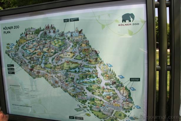 Московский зоопарк: цены и график работы в 2021 году