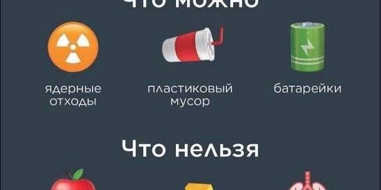 Что можно ввозить в россию и вывозить из нее