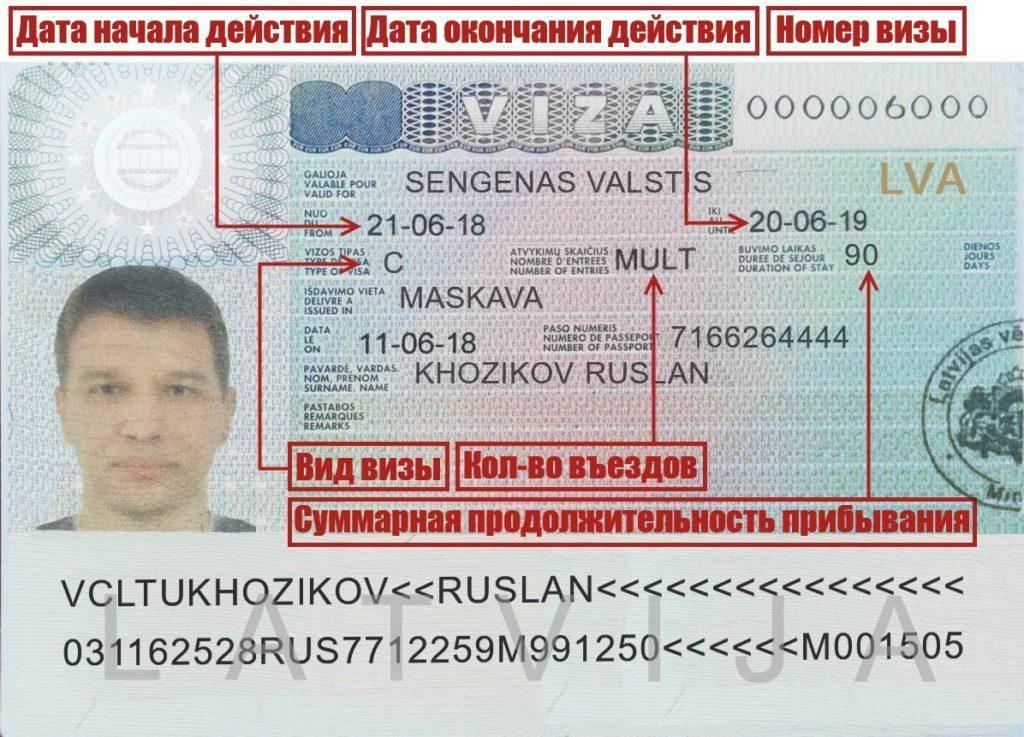 Шенгенская виза для белорусов - как получить стоимость в 2021 году