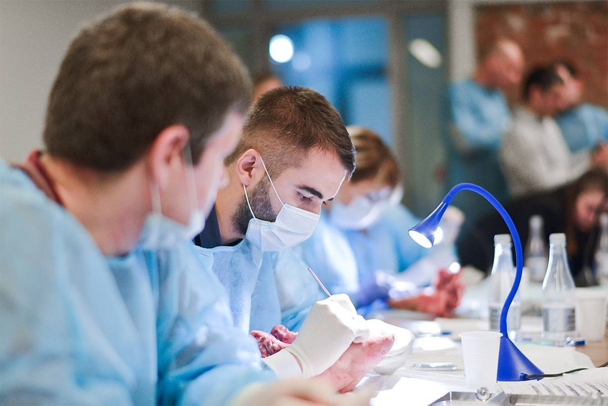 Медицинское образование в германии