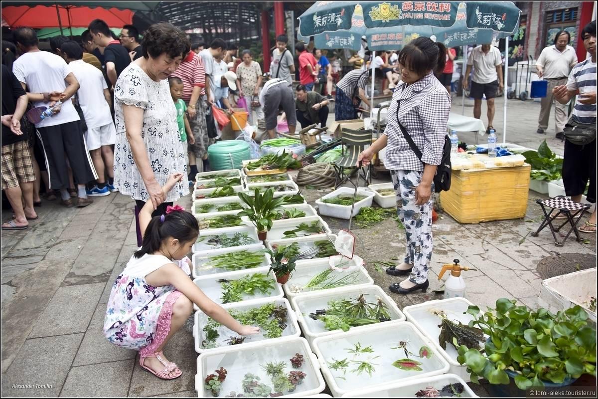 Цены на продукты в гуйлине (китай) в магазинах и на рынке