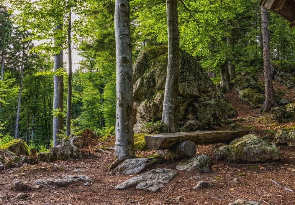 История парка баварский лес: топ-10 достопримечательностей этого уголка природы