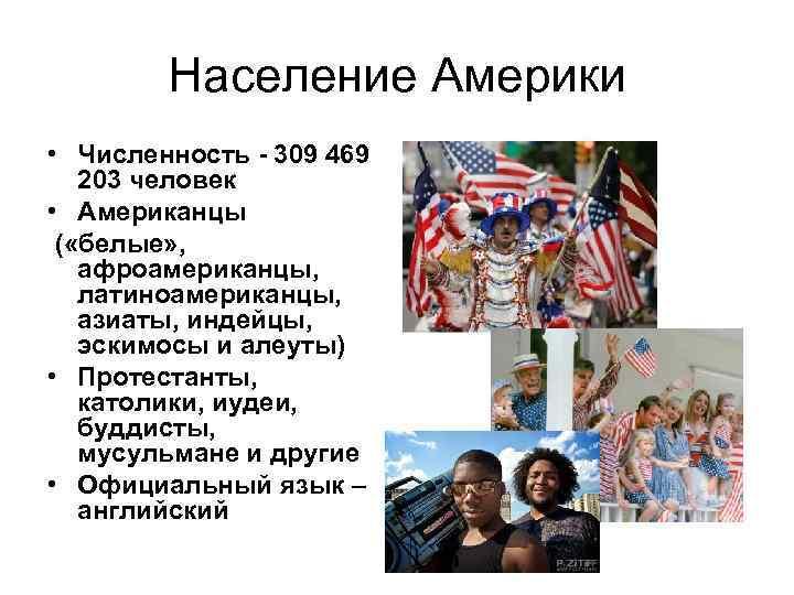 Население сша: численность, состав, доходы, демография