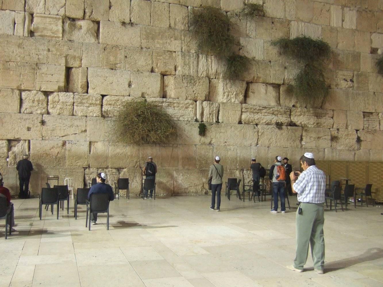 1 день в истре: достопримечательности и храмы нового иерусалима, как добраться и что посмотреть - идеи для путешествий