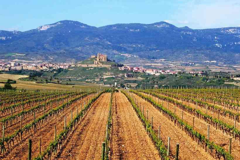 Как найти работу в сельском хозяйстве испании