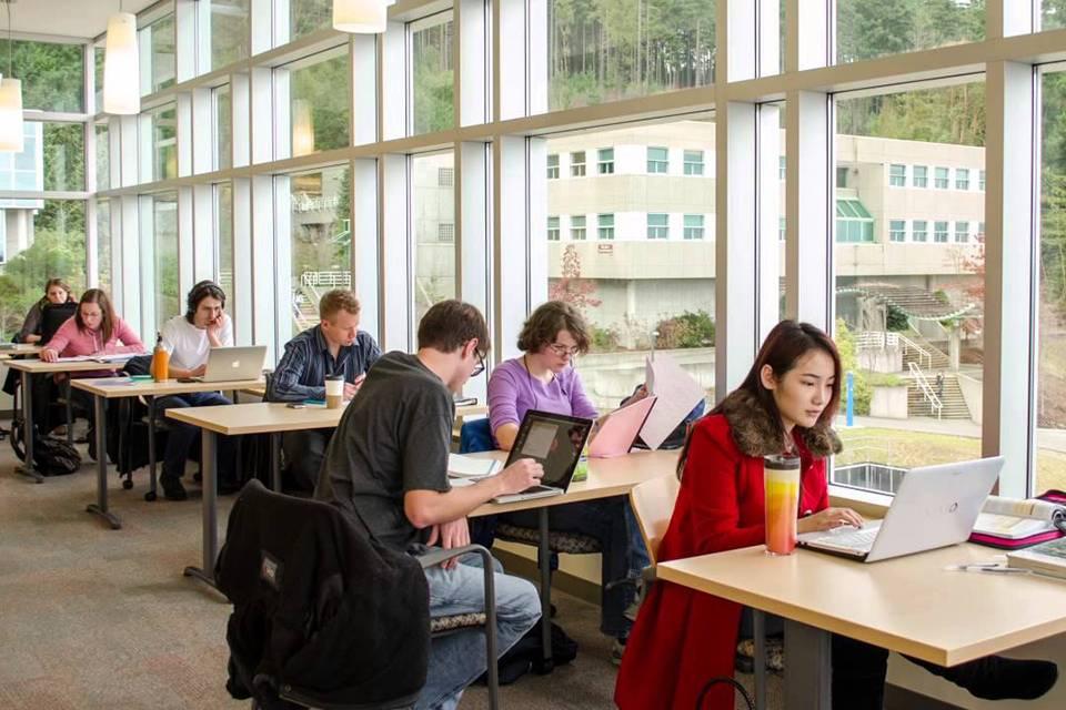 Work and study usa