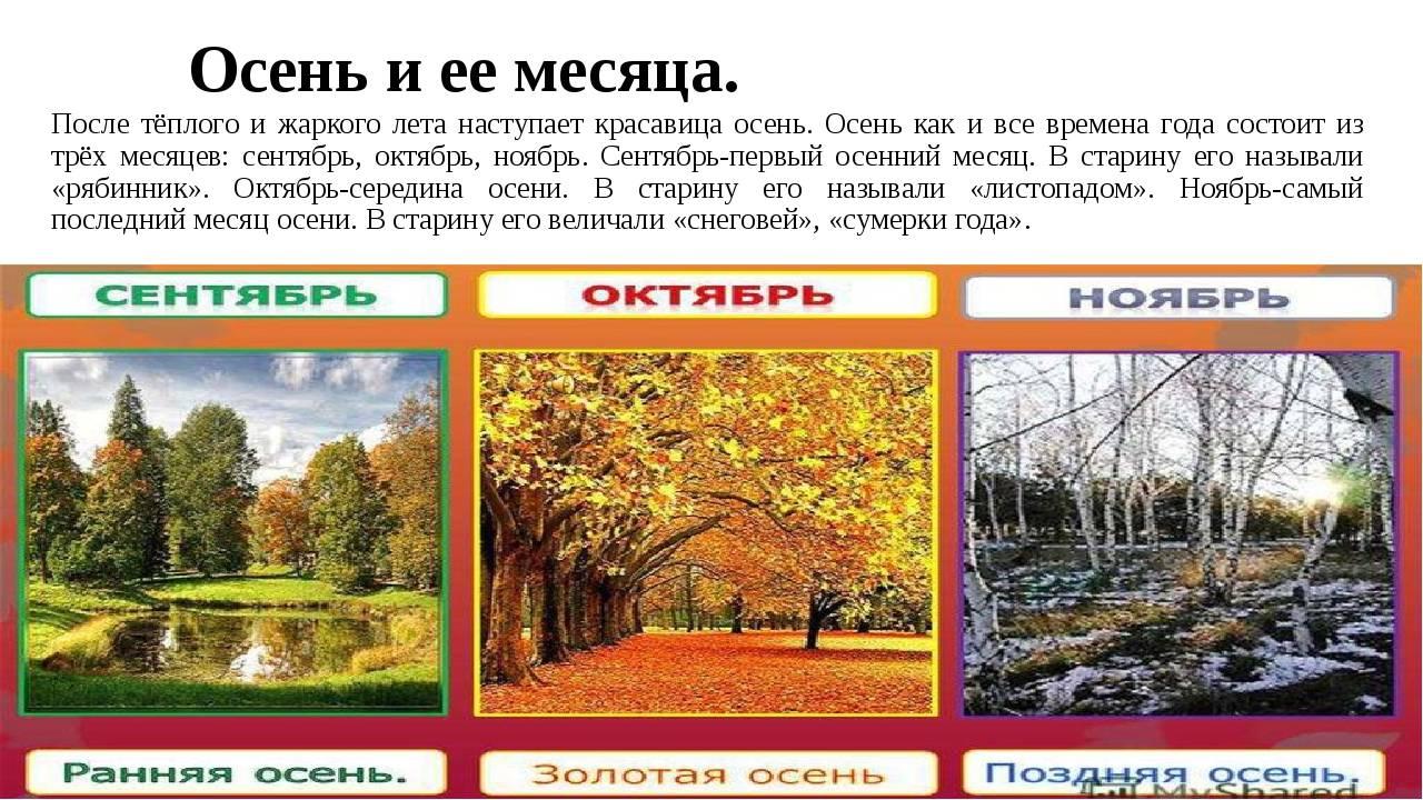 Климат и погода в чехии по месяцам, температура