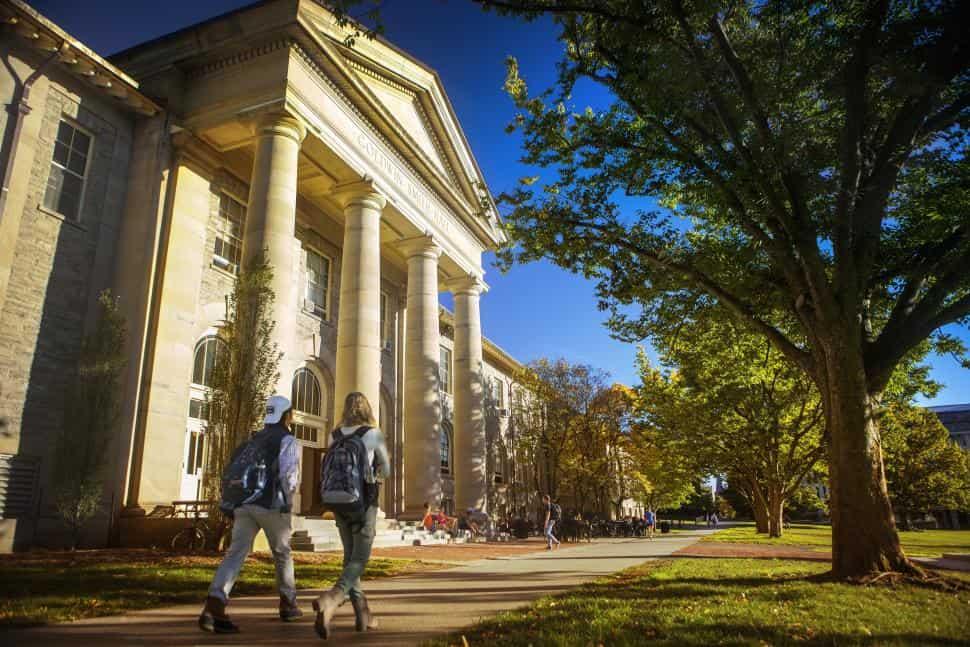 Сша: обучение в университетах в 2021 году – мигранту мир