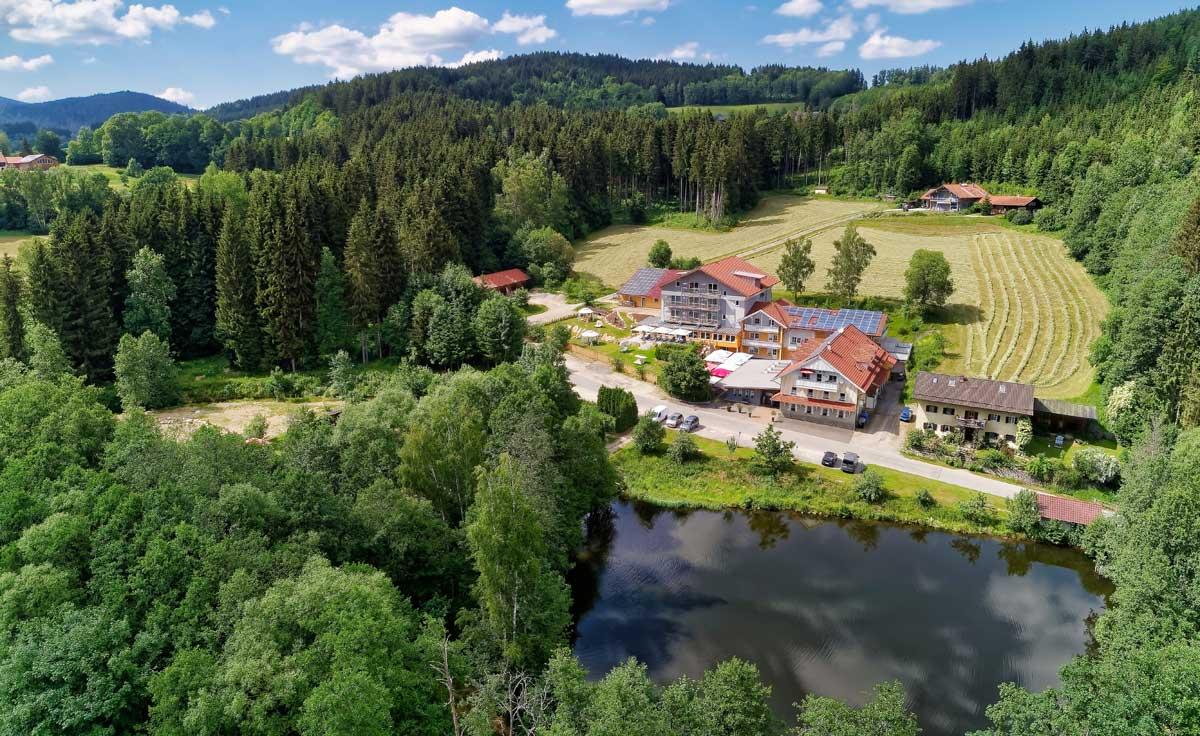 Заповедники и национальные парки евразии - национальный парк баварский лес (германия) на ваш сад - цветочный портал ваш сад!