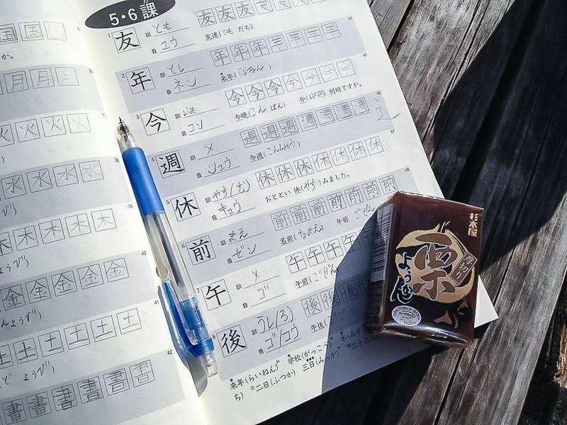 Изучение китайского языка - советы и рекомендации. с чего начать учить китайский