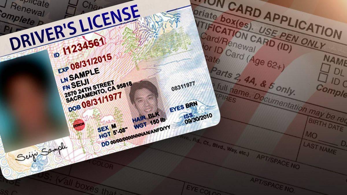 Водительские права для иностранных граждан в 2021 году (новый закон)