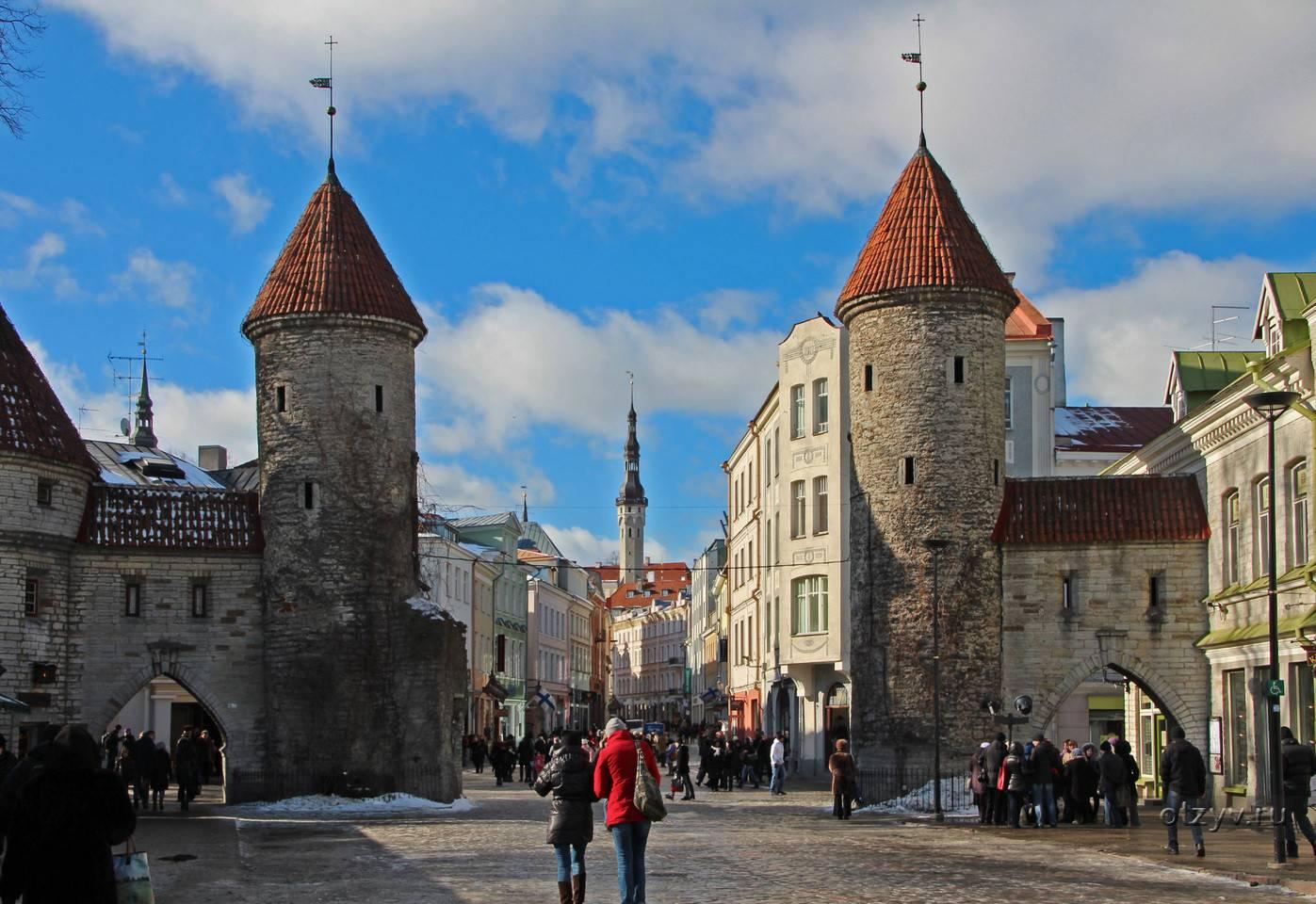 Всё о поиске и устройстве на работу в эстонии для иностранцев + отзывы