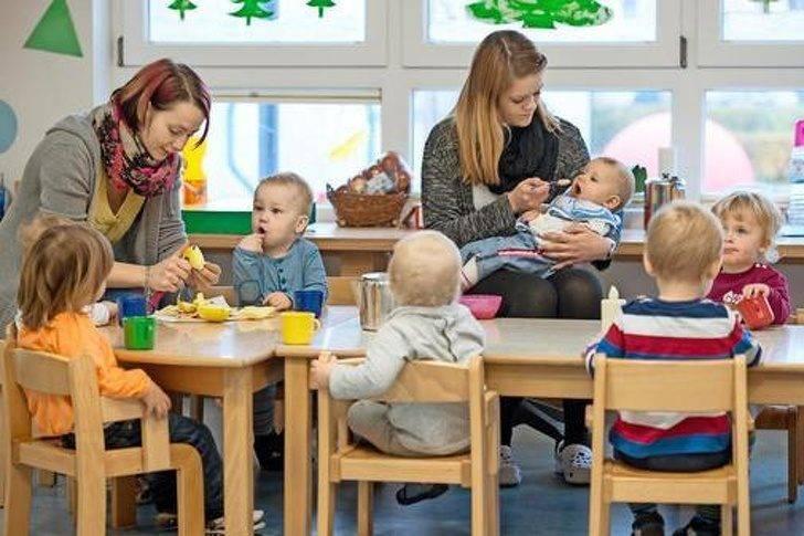 Система образования в германии: от детского сада до университета