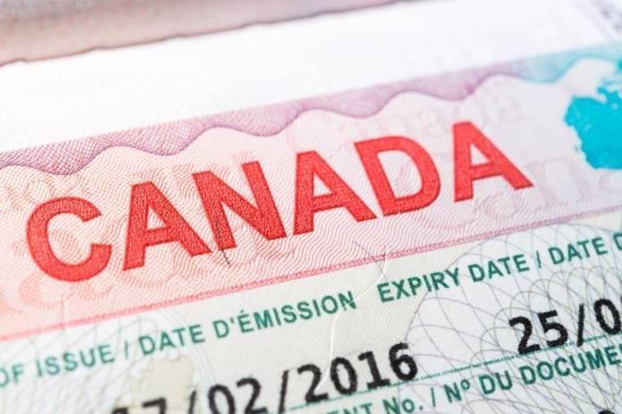 Разрешение на работу (work permit) в канаде в 2021 году