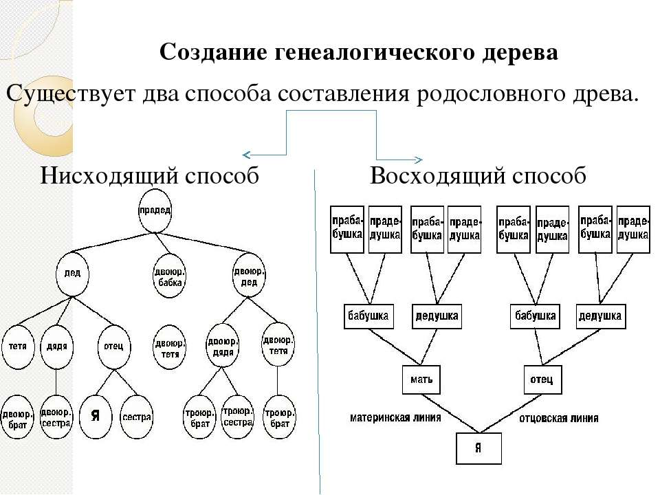Как доказать родство: пошаговая инструкция - лайфхакер