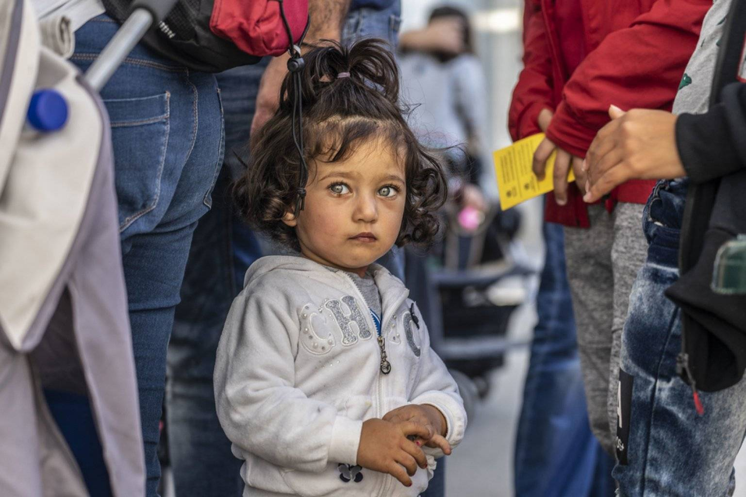 Получение статуса беженца в евросоюзе: вопросы и ответы