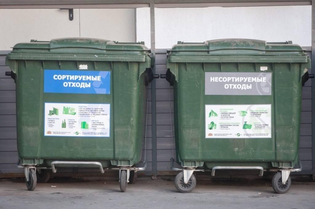 Эффективная переработка мусора: топ-10 стран мира | investfuture